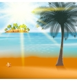 Summer Holiday Flyer Design with palm trees vector image vector image