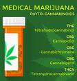 medical marijuana phyto cannabinoids concept vector image