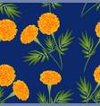 orange marigold on indigo blue background vector image