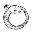 Coiled snake cartoon vector image