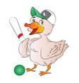 duck baseball player vector image