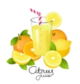 Fresh lemonade with orange and lemon fruit slice vector image