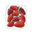 Strawberry sketch for your design vector image