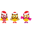 Owl in Christmas hats vector image vector image