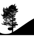 Tree Silhouette Isolated on White Backgorund vector image