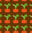 Carrot seamless pattern Plantation carrots vector image