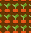 Carrot seamless pattern Plantation carrots vector image