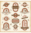 Vintage apple labels set vector image