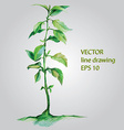 watercolor plant vector image