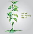 watercolor plant vector image