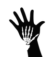 skeleton on hand vector image vector image