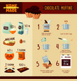 chocolate muffins recipe infographic concept vector image