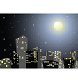 city in the night vector image