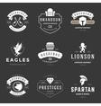 Vintage Logos Design Templates Set vector image