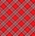 red fabric pattern vector image
