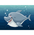Shark in sea vector image