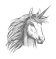 unicorn horse sketch with horn vector image vector image