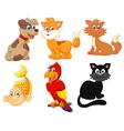 Cartoon character pets vector image