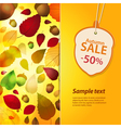 autum sale label and background vector image vector image