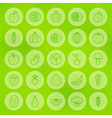 Line Circle Fruits and Vegetables Icons Set vector image
