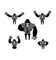 Gorilla set poses Expression of Emotions monkey vector image