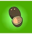 Coconut pop art vector image