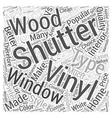 Vinyl Shutters VS Wood Shutters Word Cloud Concept vector image