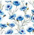 Cornflower watercolor pattern vector image