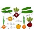 Fresh and tasty farm vegetables vector image