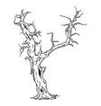 - big old tree vector image vector image