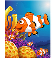 A school of fish near the beautiful coral reefs vector image vector image