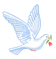 Soaring dove with flower vector image