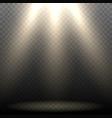 Empty Stage Lighting vector image