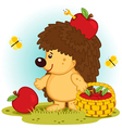 hedgehog with basket of apples vector image