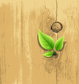 Green Leaf on old wood background vector image