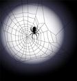 Halloween background - of spiders web vector image vector image