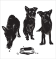 Dogs Near Bowl vector image