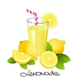 Fresh lemonade with lemon fruit slice Realistic vector image