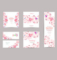 romantic collection of greeting cards with fancy vector image