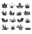 Leaves and grass icons vector image