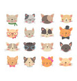 Cats heads set vector image