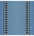 Denim texture with two parallel seams vector image vector image