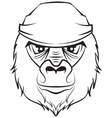 Gorilla head Black and white drawing vector image