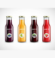 glass bottles with fruit juice collection vector image