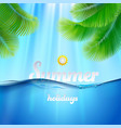 Summer holiday background vector image