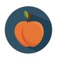 tasty peach fruit healthy vector image