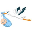 Cartoon Stork with baby vector image