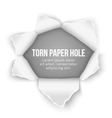 Torn paper hole background vector image