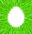 egg of grass vector image vector image