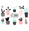 House Plants Collection vector image